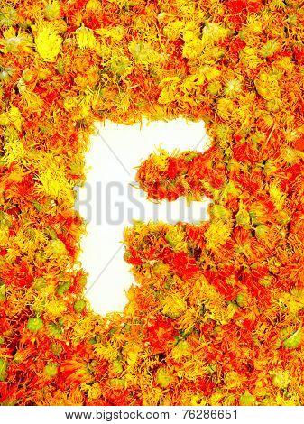 Initials letter F.