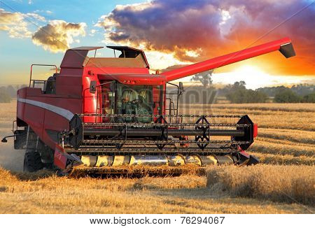 Harvester Combine In Wheat Field