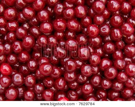 Berries  Cherries