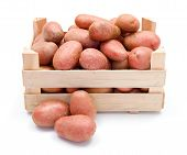 picture of solanum tuberosum  - Fresh red potatoes crop in wooden crate - JPG