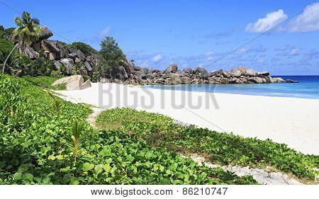 Beautiful beach Grande Anse.