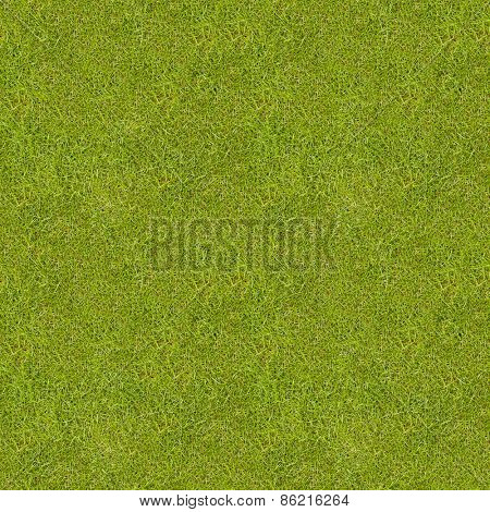 Seamless green meadow grass texture.
