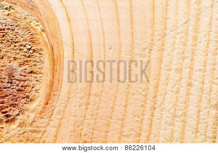 detailed texture of a wooden surface
