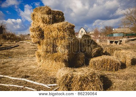 Stack Of Dried Hay On Farm