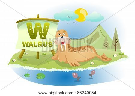 Funny Cartoon Alphabet W With Walrus
