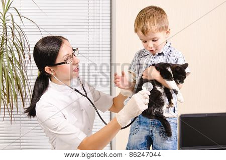 Veterinarian listens stethoscope kitten which holds boy