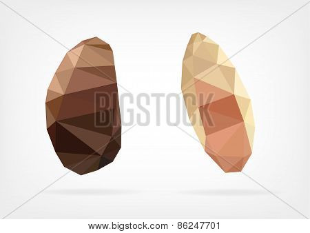 Low Poly Brazil nuts