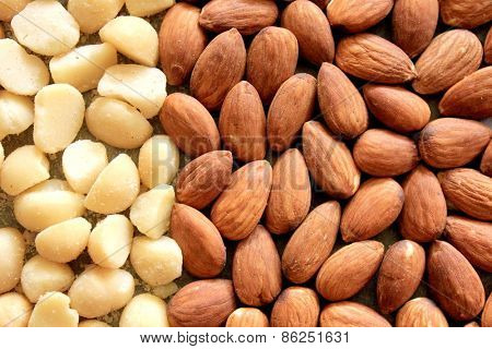 Macro Almonds and Macadamia Nuts