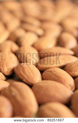 Macro Almonds 3