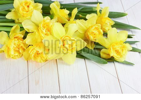 Bouquet Of Narcissus Flowers On White Wooden Background