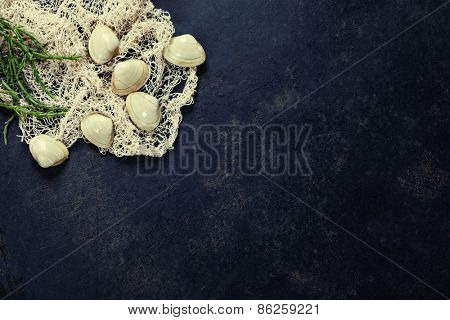 Vintage Fishing net with Clams on dark background