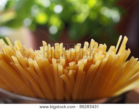 Uncooked  Spaghetti