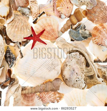 Surface covered with multiple shells