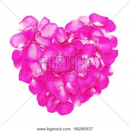 Heart Of Petals Pink Roses.