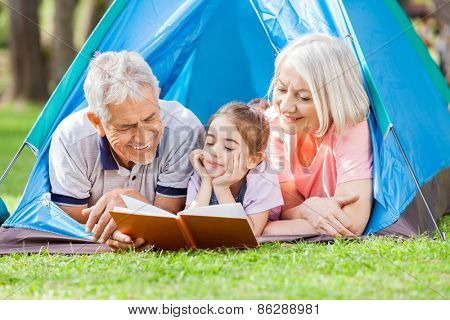 Happy grandparent with granddaughter reading book at campsite in park