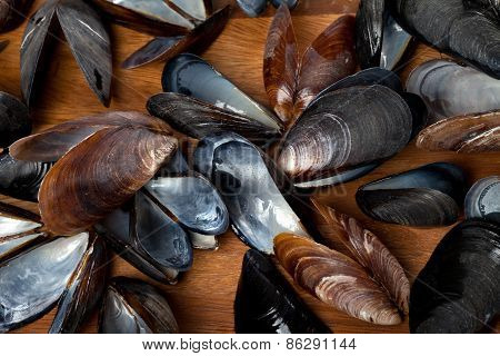 Shells Of Mussels On Kitchen Board