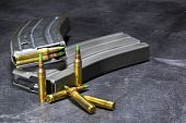 pic of ar-15  - Ammunition for an American AR - JPG