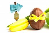 picture of easter candy  - Easter egg hunt sign against chocolate easter egg in a yellow ribbon with tulip - JPG