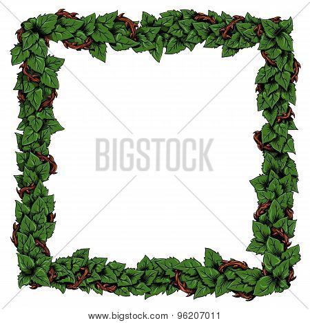 Floral frame with green rose leaves.