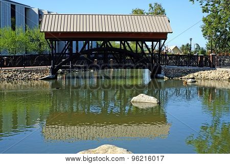 Bridge in Park