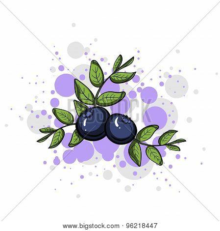 BlueberryStyle