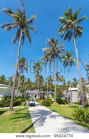 Phuket, Thailand - February 2, 2015: Beautiful tropical resort bungalows under the palm trees on Phuket island, Thailand.