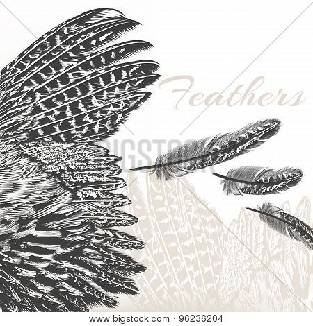Vector Engraved Feathers Fashion Background