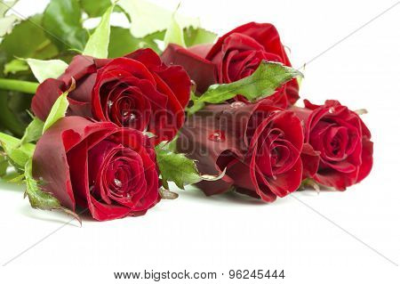 Bouquet Of Roses With Dew
