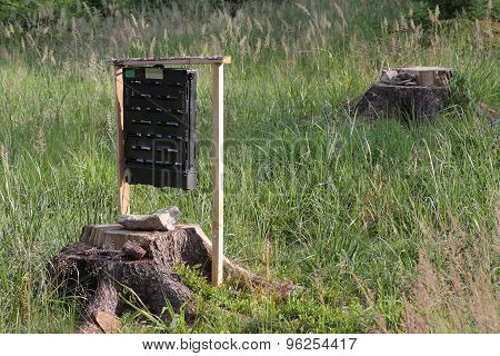 Pheromone  Trap For Bark Beetle In Grass On  Meadow Near Forest