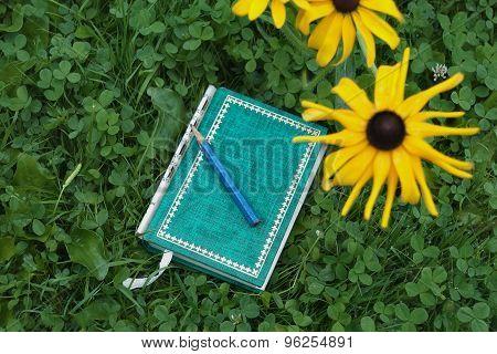 Reading In A Garden