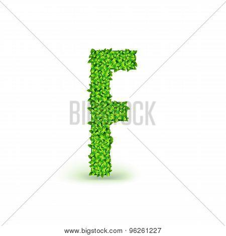 Green Leaves font F.