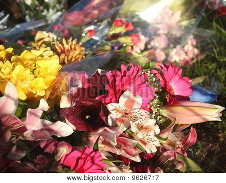 Flowers In Memory Of