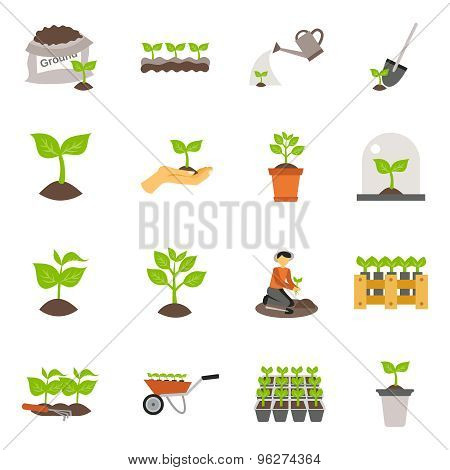 Seedling Flat Icons Set