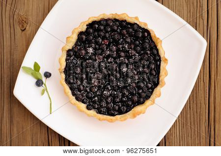 Homemade Tart With Whole Wild Blueberries In Square White Plate Decorated With Wild Blueberry Twig O