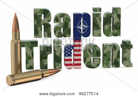 Multinational Troops Exercise Rapid Trident Us Nato