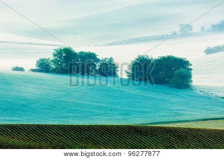 Rolling landscape of green fields in South Moravia, Czech Republic in early morning