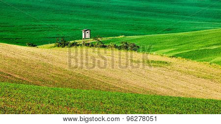 Panorama of Moravian rolling landscape with hunting tower shack on sunset. Moravia, Czech Republic