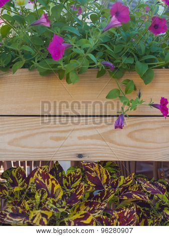 Textured Board With Flowers