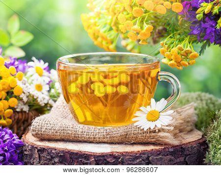 Cup Of Healthy Tancy Tea And Healing Herbs.herbal Medicine.