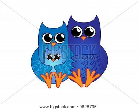 Family of blue owls
