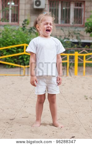 The Three-year Girl Crying On The Playground
