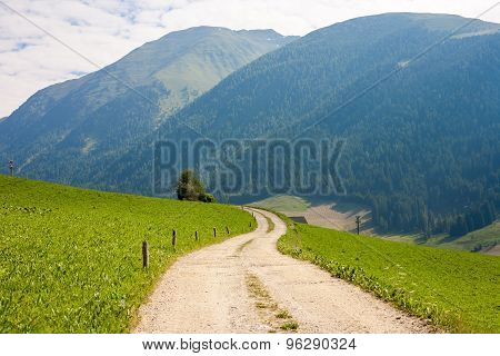 Winding Dirt Road