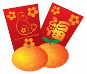 picture of mandarin orange  - 2016 Chinese Lunar New Year of the Monkey Red Packets and Mandarin Oranges Isolated on White Background Vector Illustration - JPG