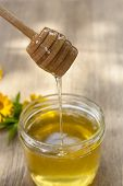 stock photo of linden-tree  - Linden honey in jar and calendula blossoms on wooden table - JPG