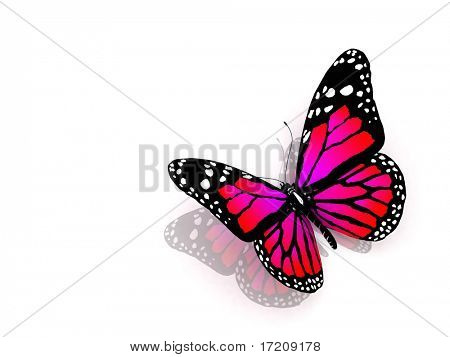 The butterfly of crimson color