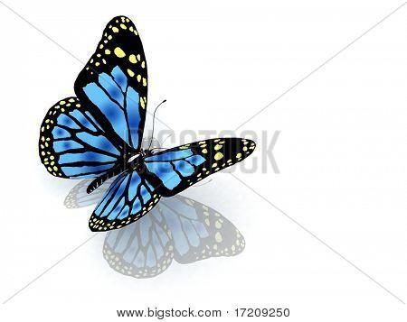 A borboleta de cor azul