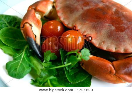 Fresh Steamed Crab