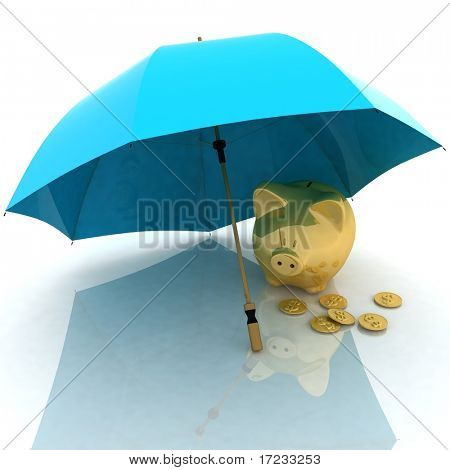 umbrella and piggy-bank. conception of defense of financial accumulations