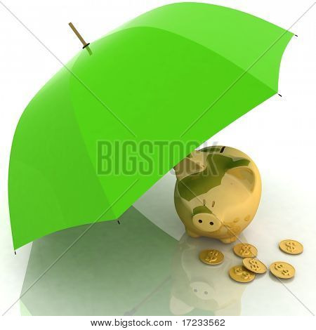 umbrella and piggy-bank. conception of defence of financial accumulations