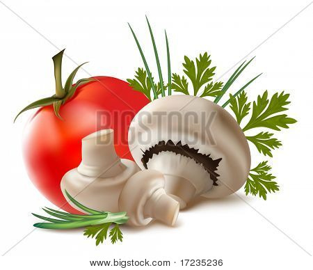 Vector. Ripe mushroom champignon.
